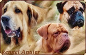 Anuler kennel