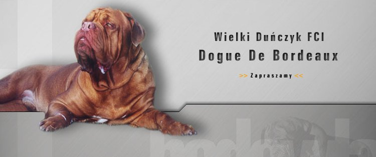 Wielki Dunczyk kennel
